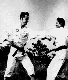 Hoffman_12_Free sparring with Kise on Okinawa